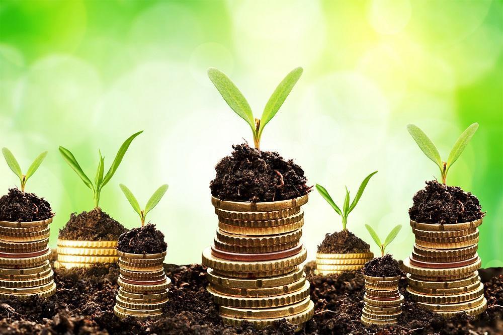 Tư vấn và đầu tư tài chính