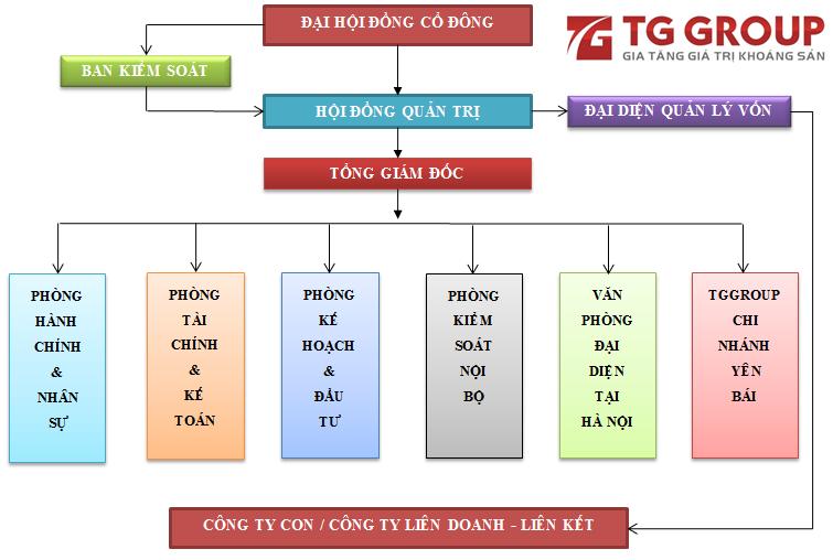 Tập đoàn Tây Giang có phải là doanh nghiệp có quy mô lớn nhất tại tỉnh Cao Bằng?